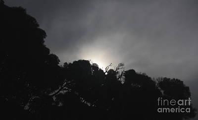 Photograph - Dark Sun by Amanda Holmes Tzafrir