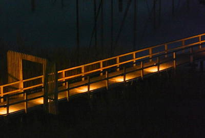Dark Surrounds The Softly Lit Dock Original by Terry Cobb