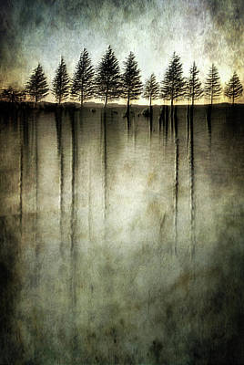 Roots Wall Art - Photograph - Dark Water Stands Over Me by Charlaine Gerber