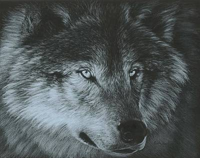 Painting - Dark Wolf by Carla Kurt