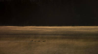 Darkness And Day Art Print by Aaron Bedell