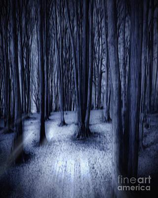 Winter Sepia Scene Digital Art - Darkness Awakened by Edmund Nagele