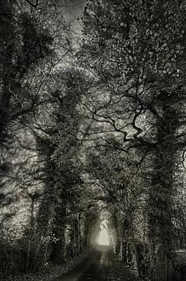 Digital Art - Darkness Then Light by Jean-Noel Nicolas