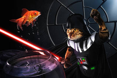 Goldfish Photograph - Darth Sushi by Christophe Kiciak