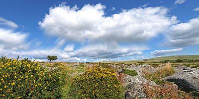 Dartmoor Panoramic Print by Gill Billington