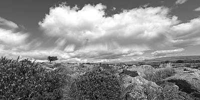 Dartmoor Panoramic In Black And White Print by Gill Billington