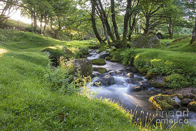 Nikon Digital Art - Dartmoor Stream by Donald Davis