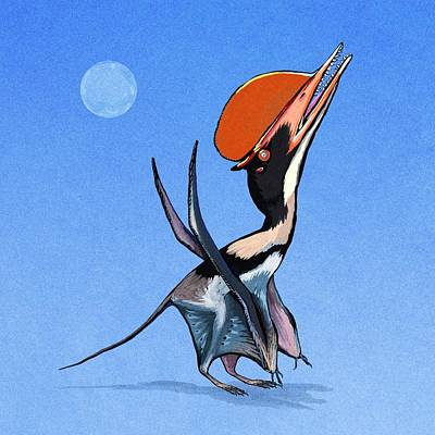 Darwinopterus Pterosaur Art Print by Nemo Ramjet