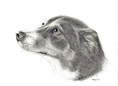Dash Art Print by Mary Mayes