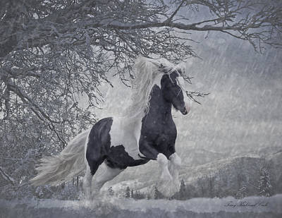 Gypsy Horse Digital Art - Dashing Through The Snow II by Terry Kirkland Cook