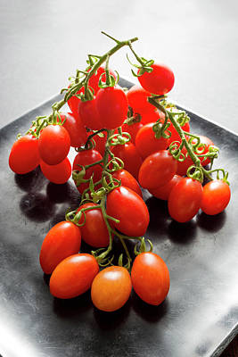 Vines Photograph - Datterino Tomatoes by Aberration Films Ltd
