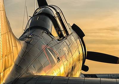 Dauntless At Dusk Art Print