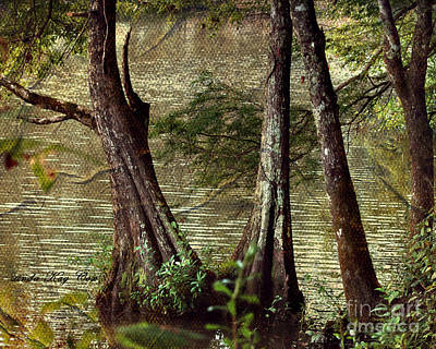 Davids River Art Print by Linda Cox