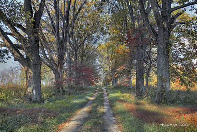 Daviess County Photograph - Daviess County Lane by Wendell Thompson