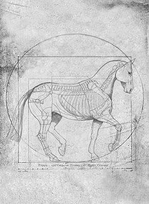Animals Digital Art - Da Vinci Horse Piaffe Grayscale by Catherine Twomey