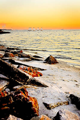 Photograph - Davis Island Yacht Club Beach  And Sailboats  by Rebecca Brittain