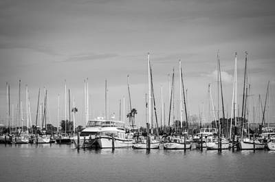 Photograph - Davis Island Yacht Club Bw by Carolyn Marshall