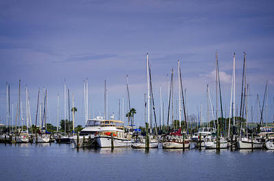 Photograph - Davis Island Yacht Club by Carolyn Marshall