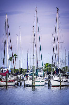 Photograph - Davis Island Yachts by Carolyn Marshall