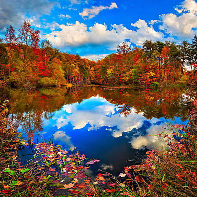 Davis Pond Reflections Art Print