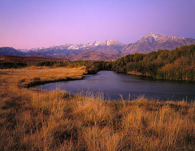 Photograph - Dawn Along The Owens River by Paul Breitkreuz