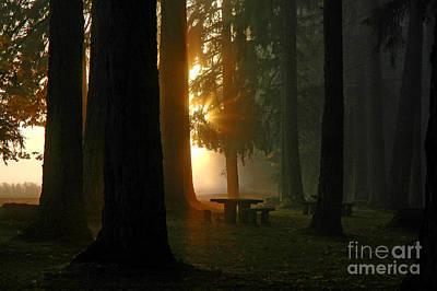Dawn At Mckercher Park Art Print by Nick  Boren