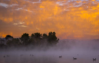Dawn At The Sepulveda Dam Wildlife Reserve Art Print