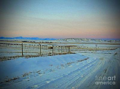 Photograph - Dawn In Cattle Country by Desiree Paquette