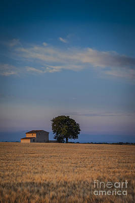 Photograph - Dawn In Provence by Brian Jannsen