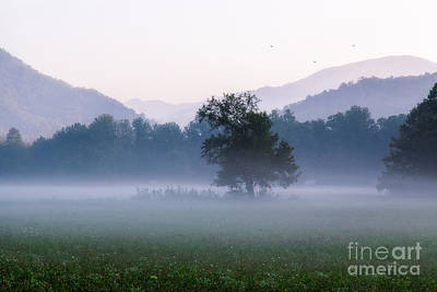 Dawn In The Mountains Art Print