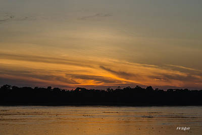 Photograph - Dawn On The Amazon River by Allen Sheffield