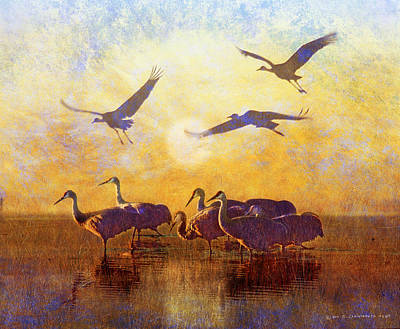 Grande Painting - Dawn On The Bosque Sandhill Cranes by R christopher Vest