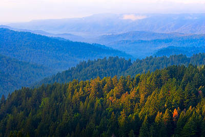 Photograph - Dawn On The Mist Covered Hills Of Northern California by Mark E Tisdale