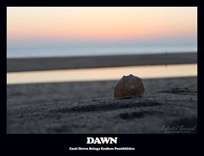 Dawn Art Print by Robert Banach