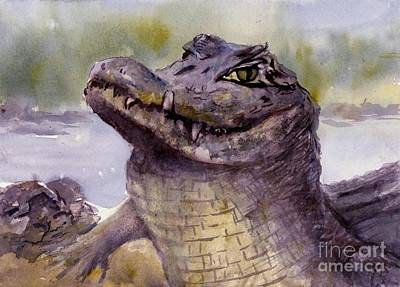 Painting - Caiman Crocodile  by Virginia Potter