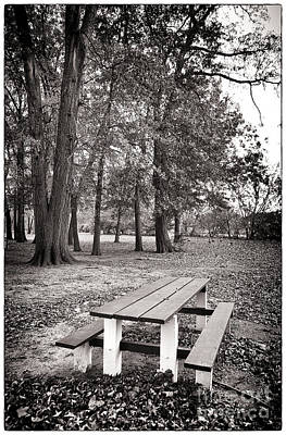 Brown Tones Photograph - Day At The Park by John Rizzuto