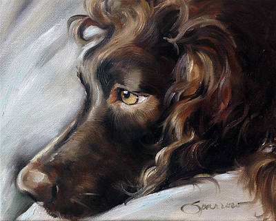 Boykin Spaniel Painting - Day Dream by Mary Sparrow