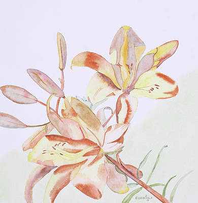 Day Lily Drawing - Day Lilies II by John Edebohls
