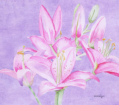 Day Lily Drawing - Day Lilies by John Edebohls