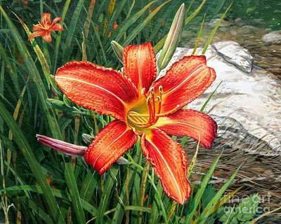 Day Lily Art Print by Bob  George