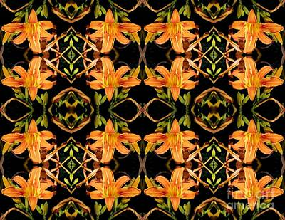 Photograph - Day Lily Square Dance 2 by Sarah Loft