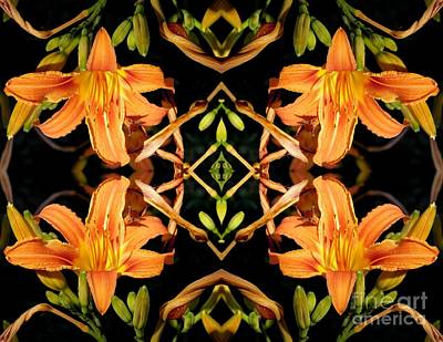 Photograph - Day Lily Square Dance by Sarah Loft