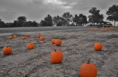 Photograph - Day Of The Pumpkins by Thomas  MacPherson Jr