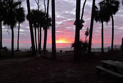 Photograph - Daybreak On Hunting Island by Joel Deutsch