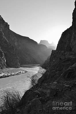 Photograph - Daybreak Over The Colorado River Along Bright Angel Trail Grand Canyon National Park Bw Vertical by Shawn O'Brien