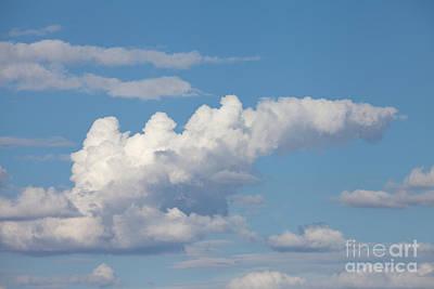 Photograph - Daydreams Sky by Cindy Singleton
