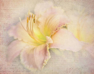 Photograph - Daylily Notes by David and Carol Kelly
