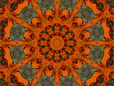 Photograph - Daylily Orange Mandala by MM Anderson