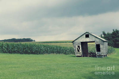 Photograph - Days Gone By by Brenda Schwartz