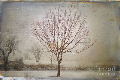 Days Of Old Print by Betty LaRue